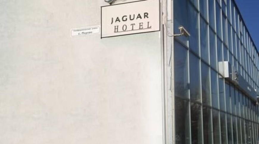 """Изображение отеля """"Ягуар"""" #1"""