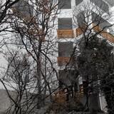 """Изображение гостевого дома """"Дача Фисташка"""" #9"""