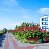 """Изображение санатория """"Полтава-Крым"""" #9"""