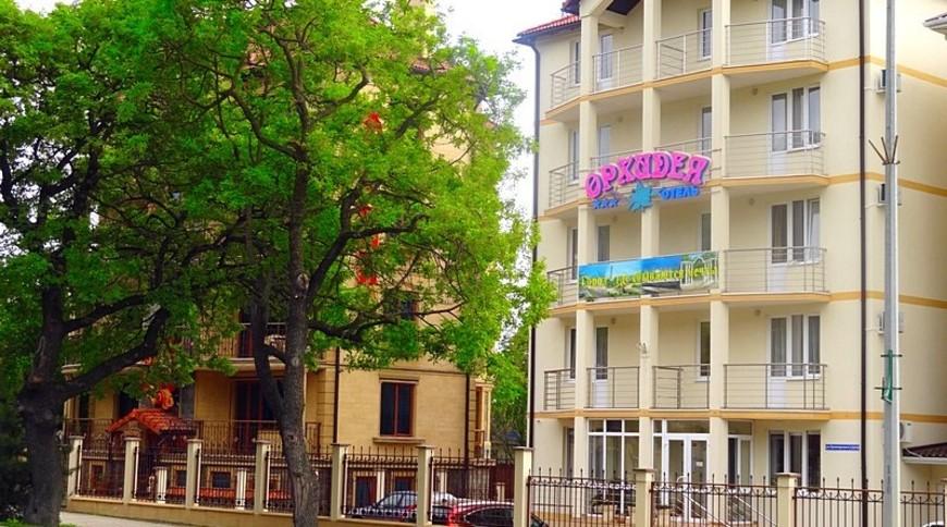 """Изображение отеля """"Орхидея"""" #1"""