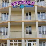 """Изображение отеля """"Орхидея"""" #9"""
