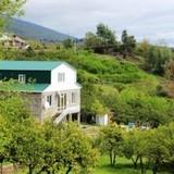 """Изображение гостевого дома """"Зеленый Уголок"""" #11"""