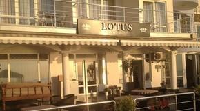 """Изображение отеля """"Lotus"""""""