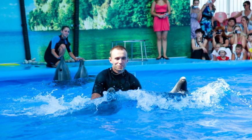 """Изображение дельфинария """"Дельфинарий «Немо Феодосия»"""" #7"""
