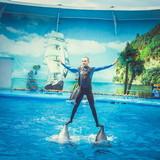 """Изображение дельфинария """"Дельфинарий «Немо Феодосия»"""" #21"""