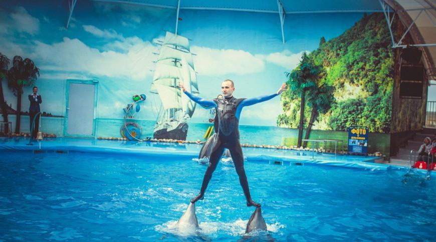 """Изображение дельфинария """"Дельфинарий «Немо Феодосия»"""" #10"""