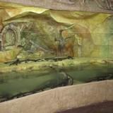 "Изображение зоопарка ""Крокодиляриум Ялтинский"" #16"