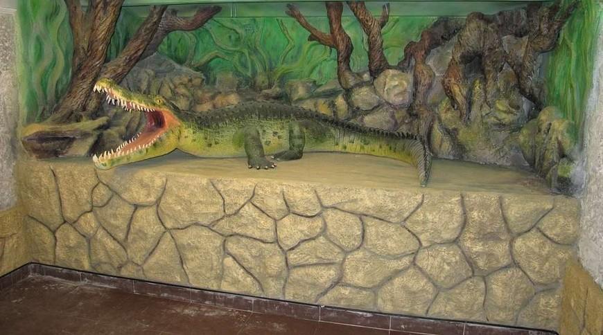 "Изображение зоопарка ""Крокодиляриум Ялтинский"" #3"
