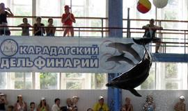 """Изображение дельфинария """"Дельфинарий """"Карадагский"""""""""""
